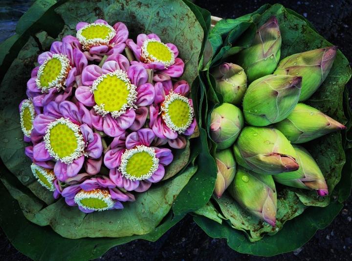 Crazy, beautiful flowers at the Bangkok Flower Market.