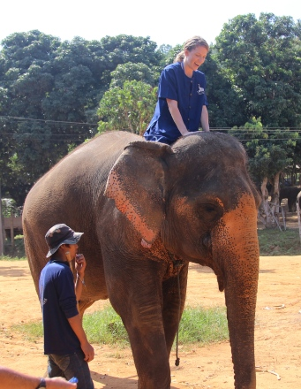 Thailand (c/o Brian Lee)